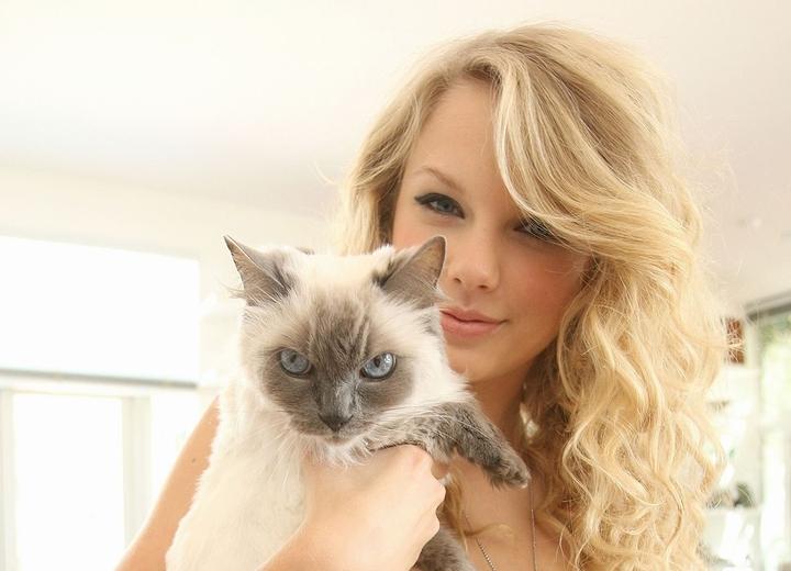 飼い猫の「インディー」を抱いたテイラー・スウィフトの画像